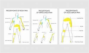 Human Body Diagram Pain