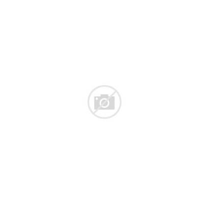 Texas Election Governor Results County Gubernatorial Svg