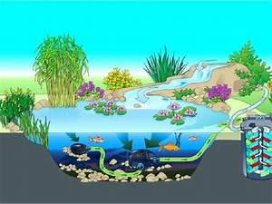 Filtration Biologique Pour Bassin A Poisson : l 39 importance du filtre de bassin ~ Premium-room.com Idées de Décoration