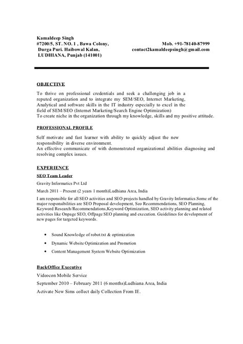 Resume Creation Form by Kamaldeep Singh Seo Resume Sle