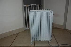 Radiateur Bain D Huile Delonghi : radiateurs bain d 39 huile occasion en aquitaine annonces ~ Dailycaller-alerts.com Idées de Décoration