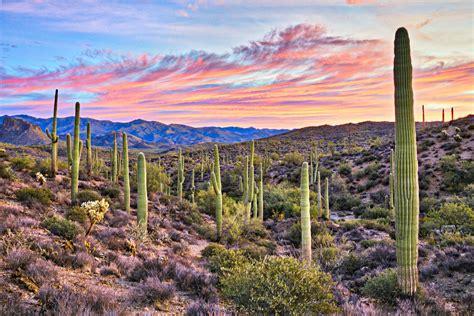 Dry And Arizona A Beacon For Many Canadian