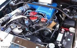 1995 Ford Mustang Engine 50 L V8