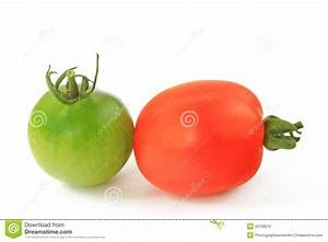 Red And Green Tomato Stock Photo - Image: 33768210