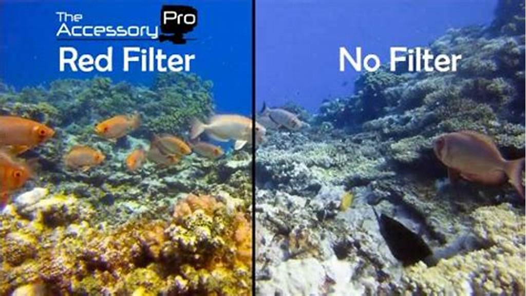 #The #Accessory #Pro #Polarizer #And #Underwater #Dive #Filters