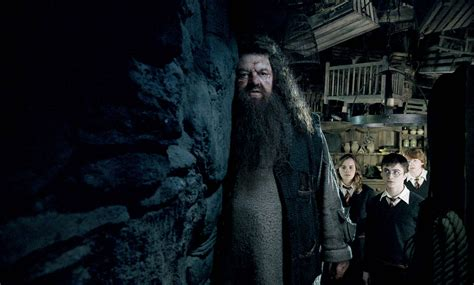 order of harry poter harry potter and the order of the photo gallery gabtor s weblog