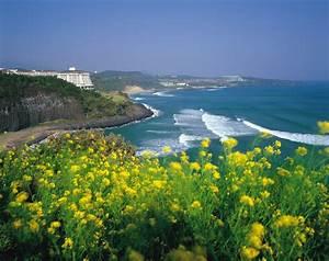 Jeju Island In Korea