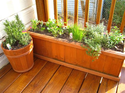 10 Tips For Growing Your Own Herb Garden