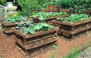 7 unique garden ideas using pallets that will enhance your