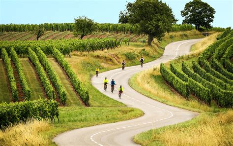 cycling routes  france alsace  slow road