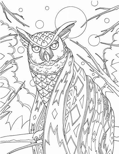 Coloring Pages Park National Hiking Hike Take
