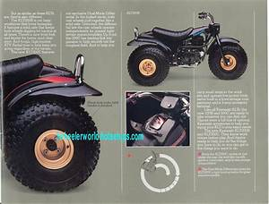 Three Wheeler World 1983 Kawasaki Ads Page 1