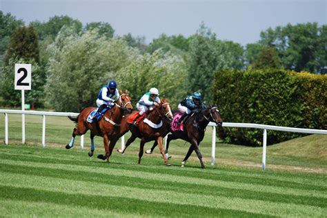 track handicapping horse racing