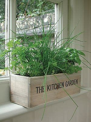 Window Sill Herb Garden Box by 25 Best Ideas About Indoor Window Boxes On