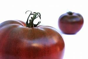 Tomate Noir De Crimée : tomate noire de crim e prim 39 fruits ~ Dailycaller-alerts.com Idées de Décoration