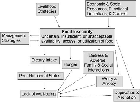 cuisine concept 2000 definition of food insecurity recipes food