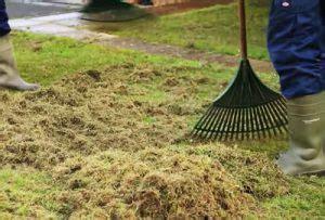 Rasen Vertikutieren Sommer by Feuchten Rasen Vertikutieren Foreignclever