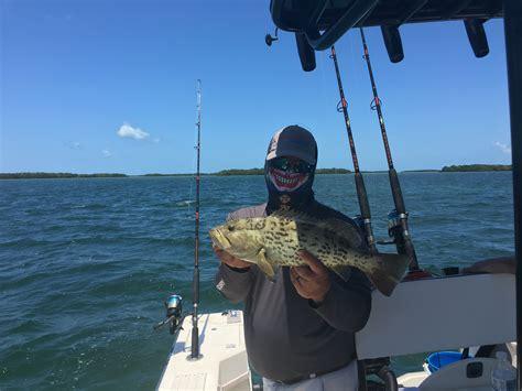 keys florida grouper yellowtail huge