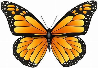Butterfly Clip Clipart Orange Butterflies Transparent Mariposas