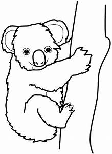 Koala clipart coloring page - Pencil and in color koala ...