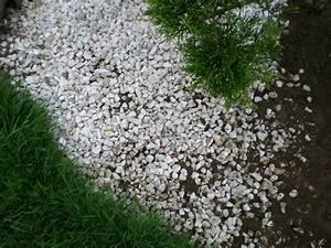 Feutre Sous Gravier : carnage dans les graviers boutures de reves le jardin ~ Premium-room.com Idées de Décoration