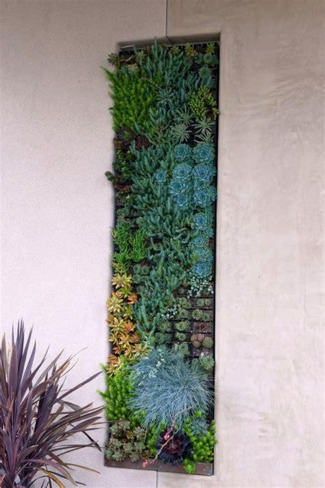 Vertical Garden  Cactus Y Suculentas Pinterest