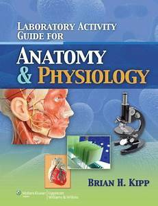 Laboratory Activity Guide For Anatomy And Physiology By