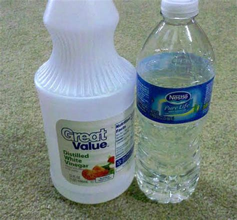 do it yourself cleaning 6 do it yourself home carpet cleaning tips