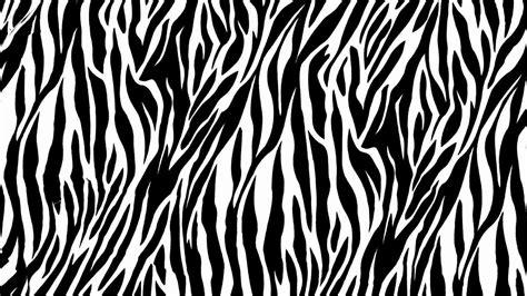 Animal Print Wallpapers For Free - zebra desktop wallpapers wallpaper cave