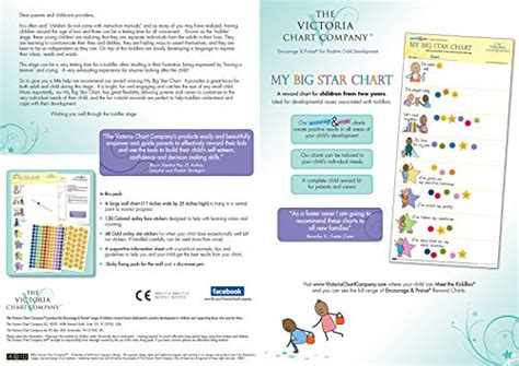big star reward chart yrs award winning great results manage toddler development