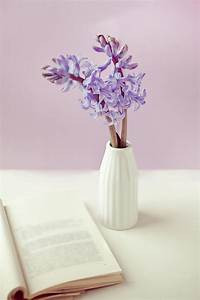 Purple Flower Vase Photograph by Uccia_photography