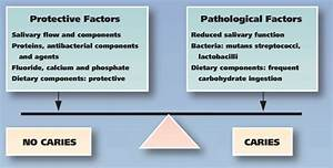 Figure  The Caries Balance  A Schematic Diagram Of The