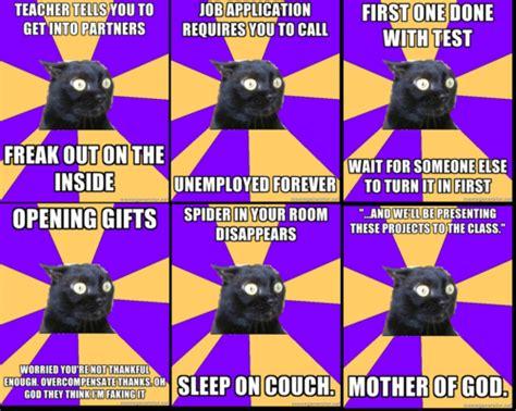 Anxiety Cat Memes - trending tumblr