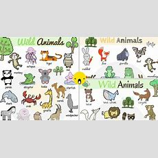 Wild Animals List Of Wild Animal Names With Images  7 E S L