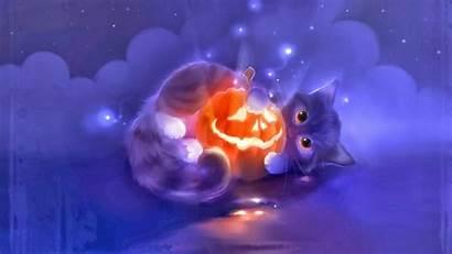 Cat Halloween Animal Pumpkin Anime Wallpapers Cats