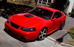 2003 Mach 1- Add a 03 Cobra Front? - The Mustang Source - Ford Mustang Forums