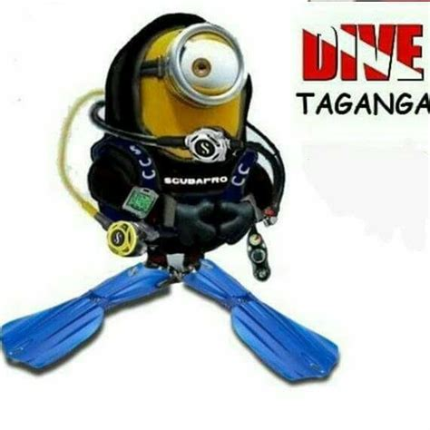 Taganga Dive Inn by Taganga Dive Inn Home
