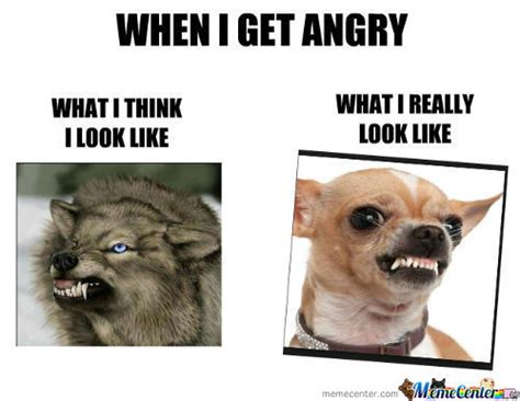 Angry Memes - memes angry face image memes at relatably com