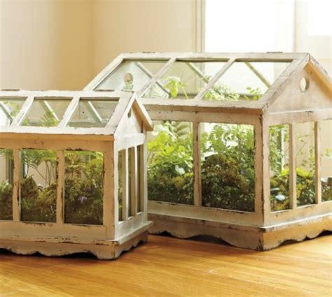 plante verte dans une chambre plante pour salon plante araign e phalang re chlorophytum comosum des cosyst mes dans des bocaux des mini