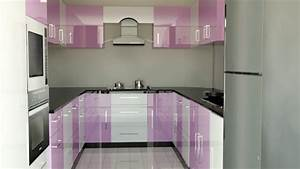 Modular kitchen designs india painting beautiful indian for Kitchen colors with white cabinets with silver fern wall art