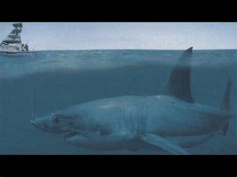 prehistoric megalodon shark proofevidence  youtube