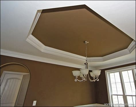 20 Best Trey Ceiling Styles