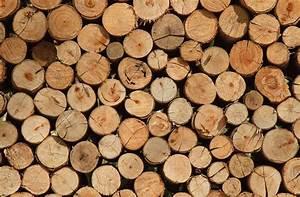 Buche De Bois Compressé Pas Cher : o acheter son bois en ile de france ~ Dallasstarsshop.com Idées de Décoration