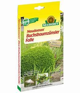 Raupen Buchsbaumzünsler Bekämpfung : neudorff neudomon buchsbaumz nsler falle baldur garten ~ Watch28wear.com Haus und Dekorationen