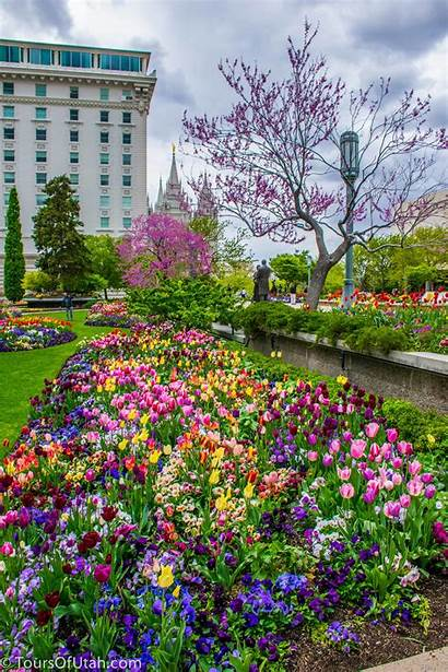 Temple Square Salt Lake Flowers Things Utah