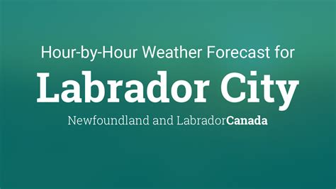 hourly forecast  labrador city newfoundland