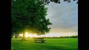Evergreen - Susan Jacks Hd