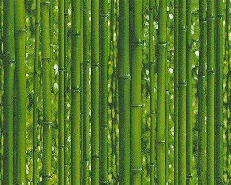 interieur sport el bomboro tapeten fototapete bambus g 252 nstig online kaufen
