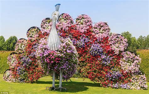 beautiful flower garden   fun