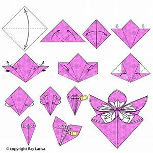 Flower: Animated Origami Instructions: How to make Origami